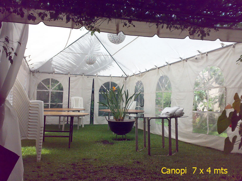 Canopy 7 x 4 mts con paredes
